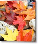 Autumn Leaves Art Print Coastal Fossil Rocks Baslee Troutman Metal Print