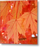 Autumn Leaves Art Prints Orange Fall Leaves Baslee Troutman Metal Print