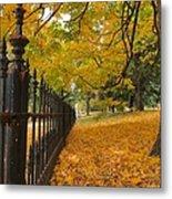 Autumn Leaves At Lafayette Park Metal Print