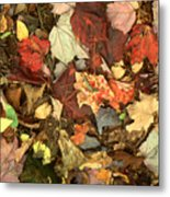 Colorful Autumn Leaves In Blue Green Red Yellow Orange Metal Print