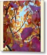 Autumn Leaves In Blue Sky Metal Print