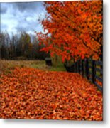 Autumn Leaves Metal Print