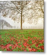 Autumn Leaves Near To Far Super High Resolution Metal Print