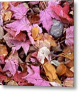 Autumn Leaves On The Forest Floor Metal Print
