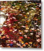 Autumn Leaves Reflections Metal Print