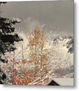 Autumn Leaves Winter Snow Metal Print
