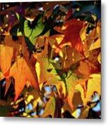 Autumn Leaves2 Metal Print