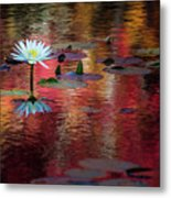 Autumn Lily Metal Print