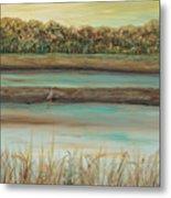 Autumn Marsh And Bird Metal Print