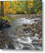 Autumn Meander Metal Print by Mike  Dawson
