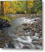 Autumn Meander Metal Print