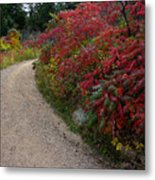 Autumn Mesa Trail Metal Print