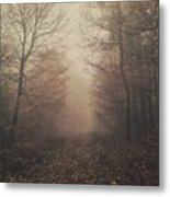 Autumn Mists Metal Print