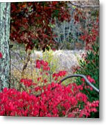 Autumn Mixtures Metal Print
