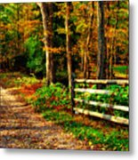 Autumn Moment - Allaire State Park Metal Print