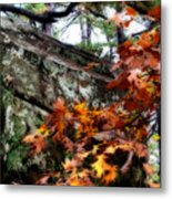Autumn Moss Metal Print
