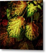 Autumn Motif Metal Print