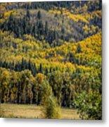 Autumn On A Colorado Range Metal Print