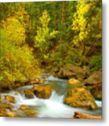 Autumn On Big Cottonwood River Metal Print