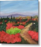 Autumn On Dolly Sods Metal Print
