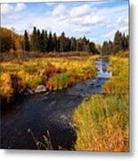 Autumn On Jackfish Creek Metal Print