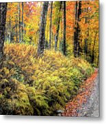 Autumn On Long Pond Road Metal Print