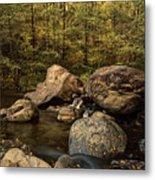 Autumn On The Creek  Metal Print