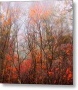 Autumn On The Mountain Metal Print