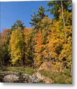 Autumn On The Riverbank - The Changing Forest Metal Print