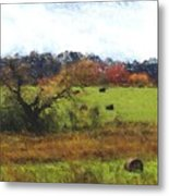 Autumn Pasture Metal Print