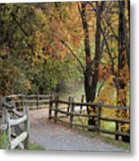 Autumn Path In Park In Maryland Metal Print