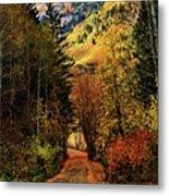 Autumn Path To Stewart Falls Metal Print