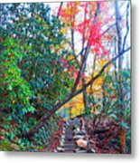 Autumn Pathway Metal Print