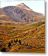 Autumn Peaks In The Rockies Metal Print
