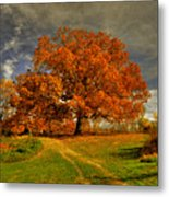 Autumn Picnic On The Hill Metal Print