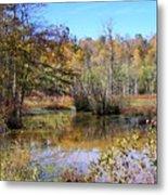 Autumn Pond Metal Print