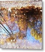 Autumn Print Metal Print