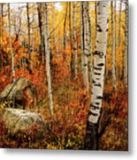 Autumn Quakies Metal Print