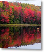 Autumn Reflected Metal Print