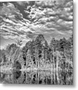 Autumn Reflection 2 Bw Metal Print