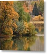 Autumn Reflection 41 Metal Print