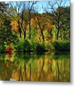Autumn Reflections On Salt Creek IIi Metal Print