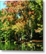 Autumn Reflections Metal Print