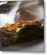 Autumn Resting Place Metal Print