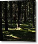 Autumn Revisited Metal Print by Frits Selier