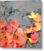 Autumn River Landscape Red Fall Leaves Metal Print