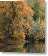 Autumn Riverbank Metal Print