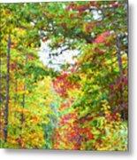 Autumn Road - Digital Paint Metal Print