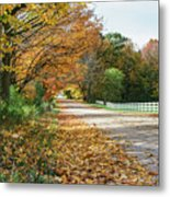 Autumn Road With Fence  Metal Print