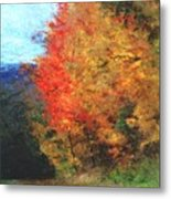 Autumn Roadside Metal Print